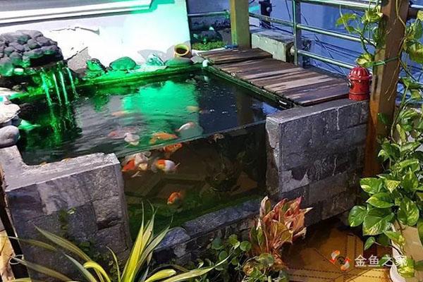 侧视俯视兼顾的阳台金鱼小池